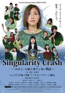 singularity-crash